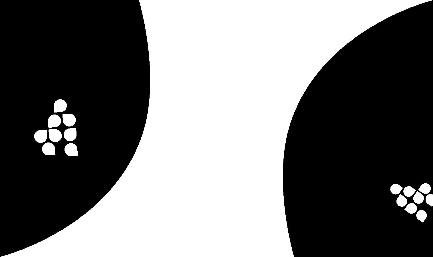 Responsive Form Widget